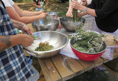 Midwifery students preparing traditional anti-anxiety tea